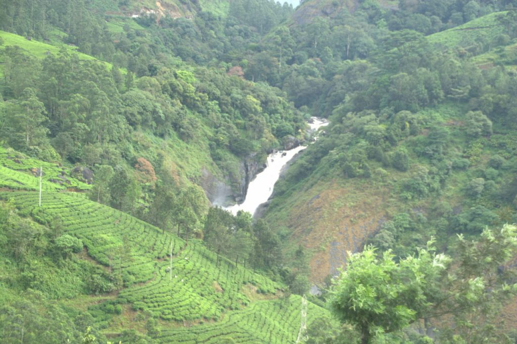 Waterfalls, forests and tea plantations at Munnar.