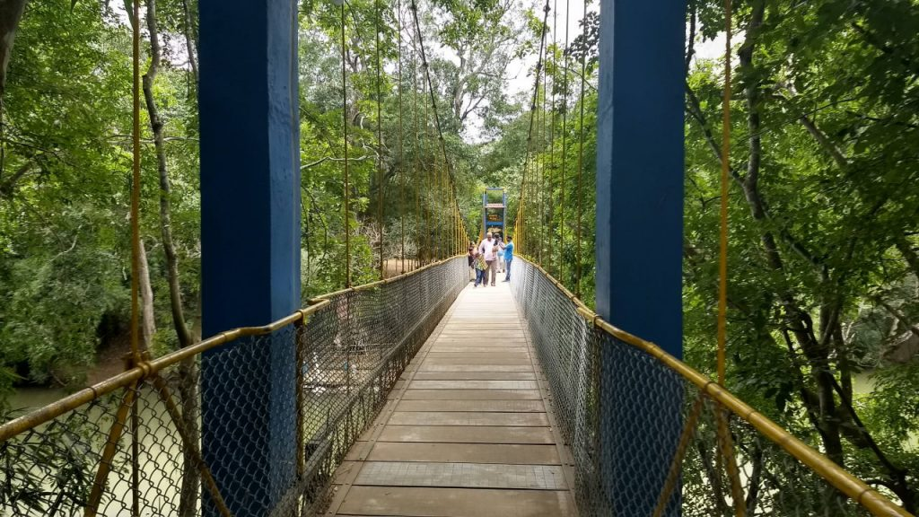 The rope bridge that crosses the Cauvery river and gets us to Nisargadhama nature park, Coorg.